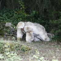 Pretoro (Ch), San Domenico e il lupo, prima uscita del lupo dal bosco